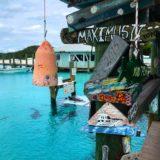【バハマ】サメに囲まれて泳げるスポットと豚さんビーチに感動!【カリブ海きれい】